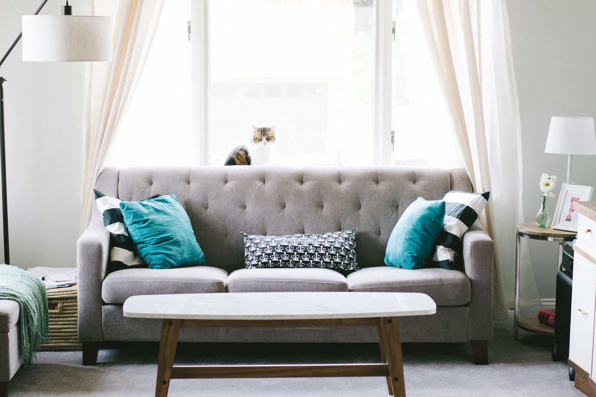 Wohnzimmer reinigen