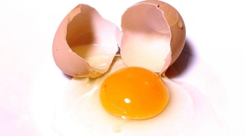 Tipps rund um das Ei